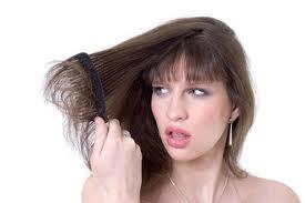 cara Mengatasi Rambut Bercabang