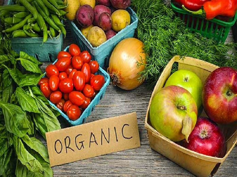 Makanan Organik Untuk Kesehatan